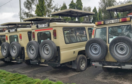 For Safari – Land Cruiser with pop up roof